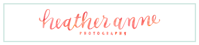 Heather Anne Photography logo